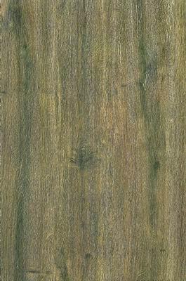 御木——胡桃木