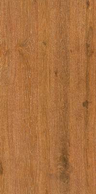 御木——印尼柚木